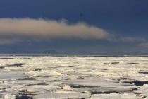 37 ijsschotsen